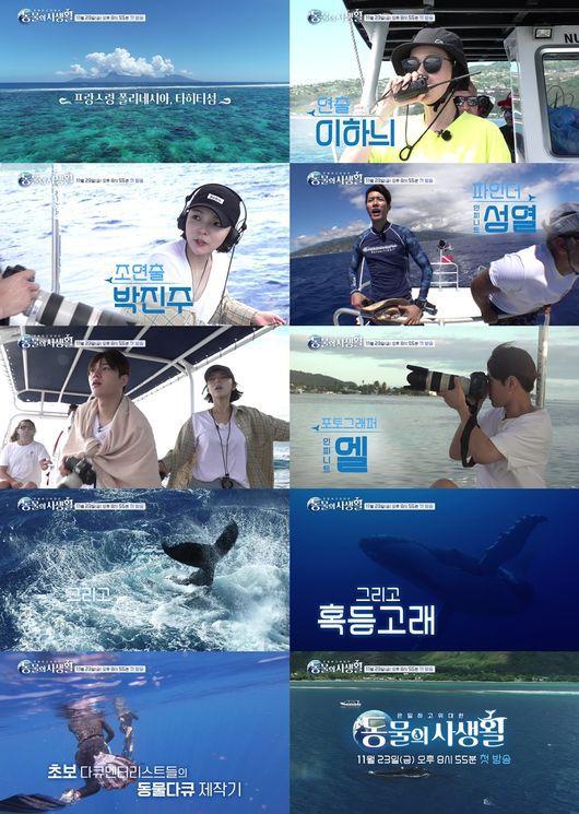 Moon Geun Young, L (Infinite) sẽ đóng bộ phim tài liệu về động vật 4