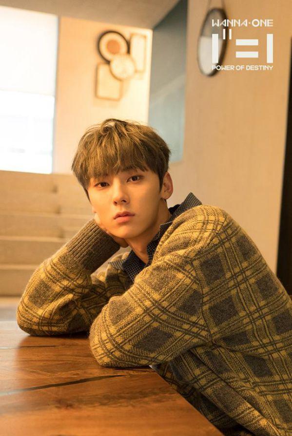 11 thành viên của nhóm Wanna One sẽ hoạt động gì sau khi tan rã?2
