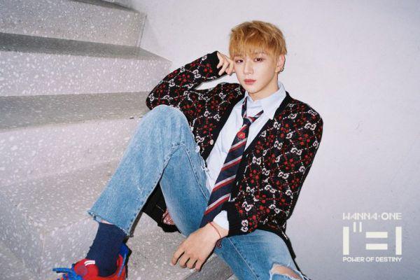 11 thành viên của nhóm Wanna One sẽ hoạt động gì sau khi tan rã? 6