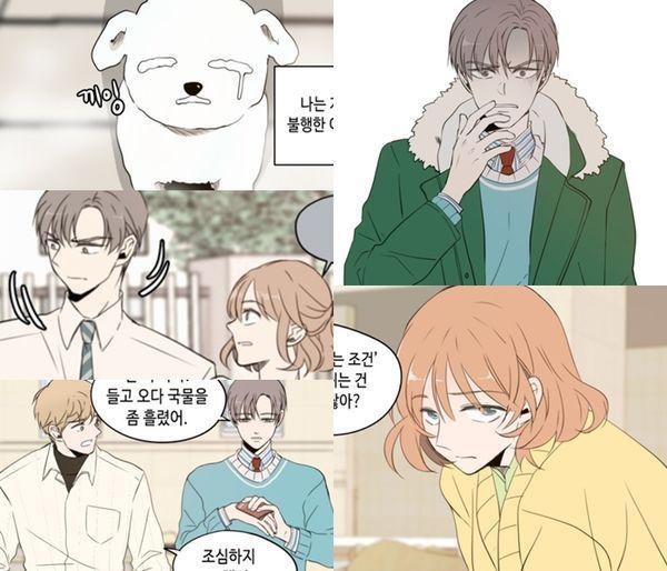 Danh sách 23 phim bộ Hàn Quốc chuyển thể từ webtoon lên sóng 2019 17