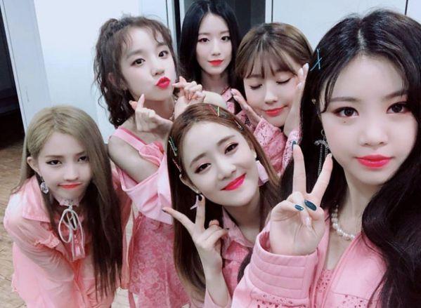 Chính thức: Dàn lineup nhóm nhạc, diễn viên tham gia AAA 2019 Việt Nam 19